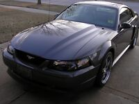 01-04 mustang GT, cobra or aftermarket hood