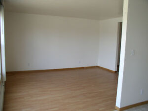 Quiet,large two-bedroom apartment in central Chelmsford