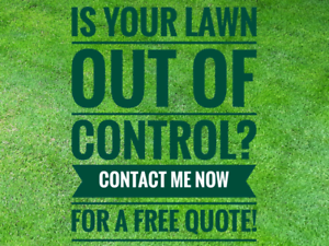 LAWN CARE. CONTACT FOR FREE QUOTE Old Reynella Morphett Vale Area Preview