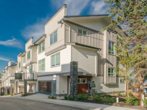 Spacious, bright and BRAND NEW Townhome (4Bed/3.5Bath)
