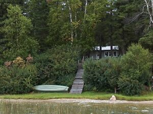 PRICE REDUCED TO SELL.  Lakefront 4 season cottage in Sask. Regina Regina Area image 4