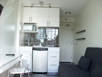 Furnished 150 sq ft. micro unit available October 1st