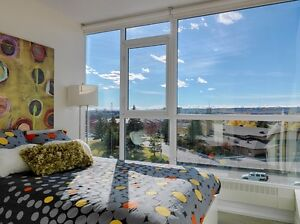 Penthouse floor, 1 bedroom, modern apt, minutes from U of C!