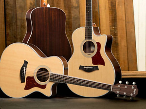 Taylor or Larivee Acoustic Guitar