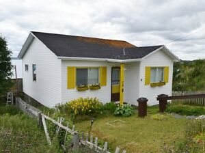 74 Meadow Rd, Upper Island Cove, NL - MLS# 1161056