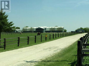 Are you looking for a HORSE BOARDING/RIDING FACILITY in BRANT???