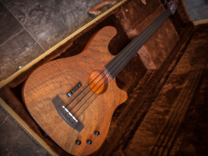 Carvin AC40f Acoustic/Electric Fretless Bass