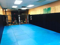 MMA Fitness Workout