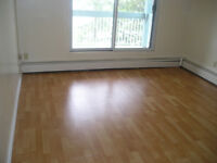 Large,renovated 1010 sq ft 2-b/r cdo in millwoods avail Nov 01
