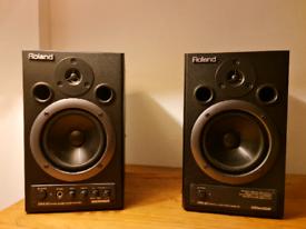 Roland DM-20 Monitors
