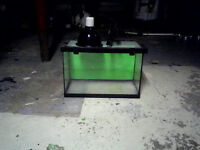 Reptile tank with heating lamp.