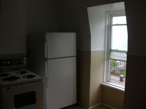 Large Two Bedroom - Walk to Downtown