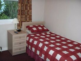 Single Room for rend. £50 week including all bill