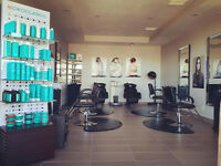 hairstylist, 3 chairs rent or lease