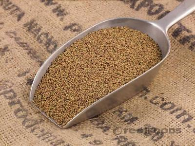 Sprouting Seeds Certified (NON-GMO) Organic Alfalfa Seeds Certified Organic Alfalfa Seeds
