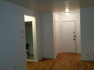 Nice Apartment 3 1/2 available now in Rosemont Area