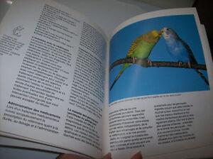 2 livres d'oiseaux de compagnie   2 exotic birds books Gatineau Ottawa / Gatineau Area image 5