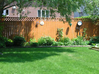 Fence staining from 75 cents per square foot