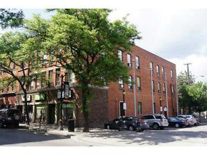 Condo for Rent-Jan1st- Downtown Hamilton / International Village