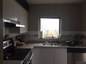 Short Lease Roomate wanted!