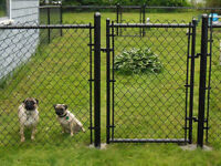 Frost fence instalation / Instalation de cloture / paysagement