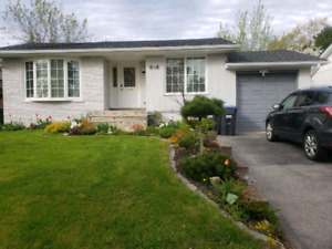 Rooms for rent by Shopers World Brampton L6Y 1T9