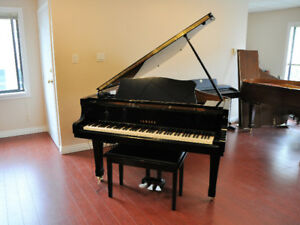 Yamaha C2 Silent Hybrid Baby Grand Piano for Sale