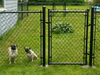 Chain link fencing and repairs