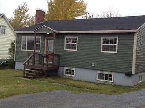 Bright Basement Apartment in Townsite area.
