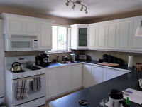 Kitchen Cabinet Spray Painting with Lacquer