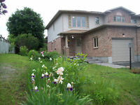 Great 3 ed Family Rental In Stittsville