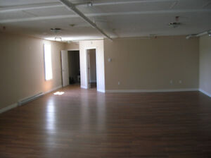 Renovated Spacious 4 Bedroom Apt. - Downtown - Avail. Aug. 1