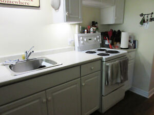 Spacious 1 bedroom apt available Dec or Jan 1 Kingston Kingston Area image 3