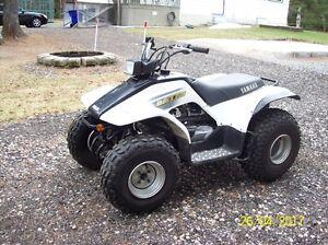 Yamaha Breeze 2002  125 cc