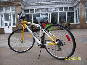 Alum alloy frame 12 speed city road bike,