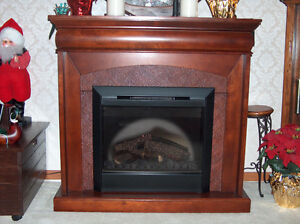 Beautiful fireplace in excellent condition $125