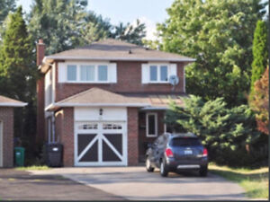 Basement apartment to rent in Sandalwood and Hurontario