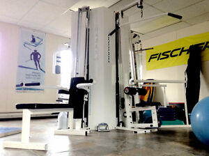 Circuit Weight Training Station - Free to a good home!