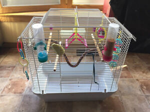Bird cage for small bird(s) with all accessories, great deal