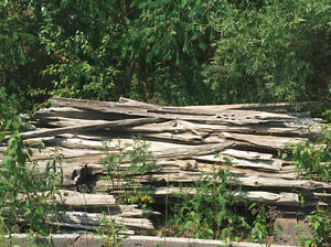 Cedar Split Rails for Decorative Fencing Cambridge Kitchener Area image 1