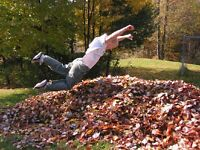 Fall lawn, garden & leaves clean up.