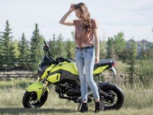 2018 Honda Grom ABS .......... with $500 worth of Riding LESSONs