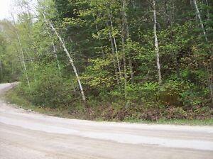 Terrain touche la rivière Nominingue à Rivière-rouge Gatineau Ottawa / Gatineau Area image 2