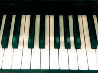 Affordable Private Piano Lesson South End Winnipeg!