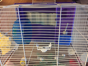 Hardly used small animal cage