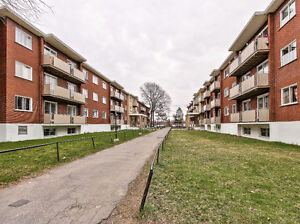 ***Beautifully Renovated 2.5 in Lasalle***  -  Available Now!!!!