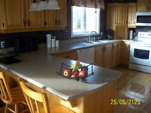 counter top  ,bar top, desk top, stainless sink,  faucet