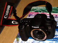 Canon 60D body only.