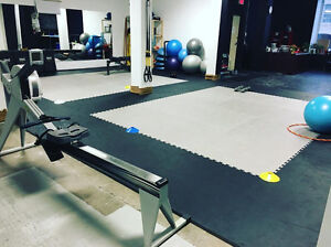 Personal Training & Nutrition Consulting Cambridge Kitchener Area image 6