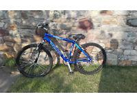 "Mountain Bike Flacon Colarado 21"" Front Suspension"